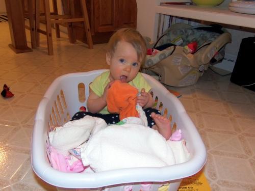 stella laundry